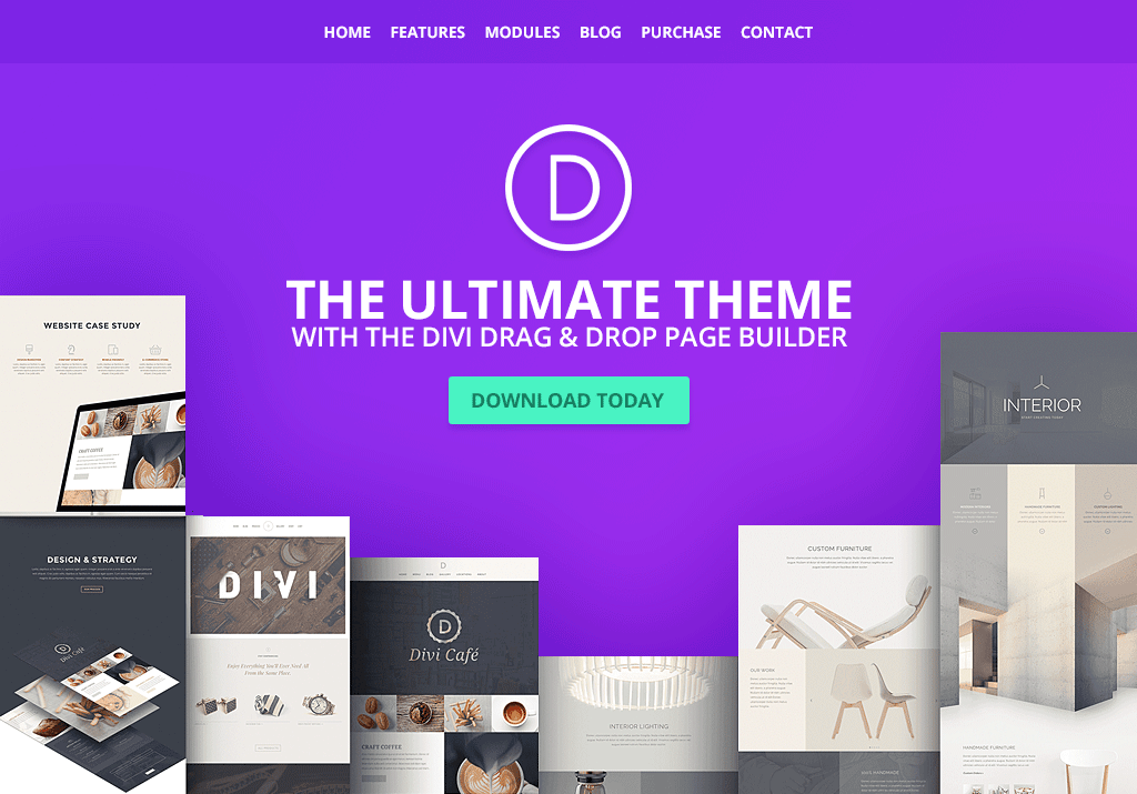 divi-popular-multipurpose-theme.png