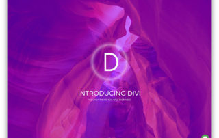 divi-universal-wordpress-page-builder-theme.jpg