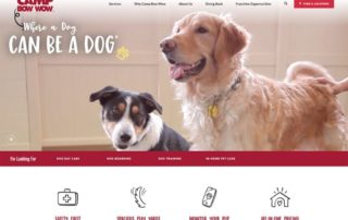 1_pet-care-websites-1024x683.jpg