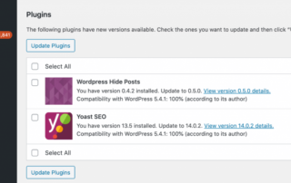 wordpress-updates-1024x482.png