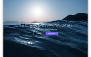 shapely-wordpress-theme.jpg